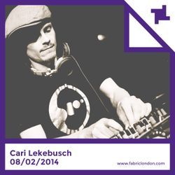 Cari Lekebusch fabric Promo Mix 2014
