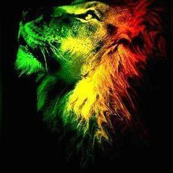 Dub Reggae Session Live On Fokus.FM August 12-08-14
