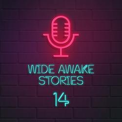 Wide Awake Stories #014 ft. Above & Beyond, Mirik Milan, Slushii, Roy Volpe & Tisoki