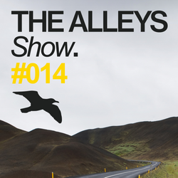 THE ALLEYS Show. #014 We Are All Astronauts