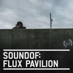 SoundOf: Flux Pavilion