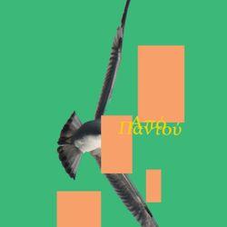 Από Παντού #14 (Bok Bok / Fatima / 7 Days of Funk / Quantic / Shabazz Palaces / Shawn Lee)