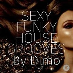 SexyFunkyHouseGrooves Vol 1