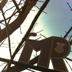 MonkeyRobot - Spring Break