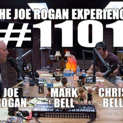 #1101 - Chris & Mark Bell