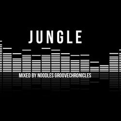 JUNGLE & DNB NU-GENERATION VOL 1 VINYL MIX BY NOODLES GROOVECHRONICLES