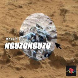 MIXED By Nguzunguzu
