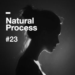 Natural Process #23