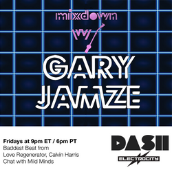 Mixdown with Gary Jamze January 24 2020- Chat with Mild Minds, Baddest Beat from Love Regenerator