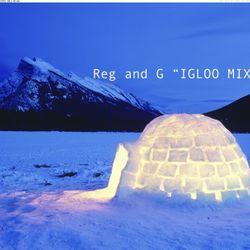 Ms Skyrym Sounds - Igloo Mix - Reg & G Man Guest Mix (10 05 2014)
