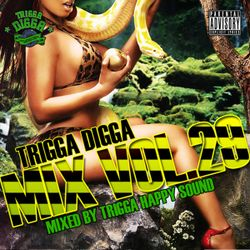 TRIGGA DIGGA MIX VOL. 29