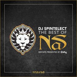 Dj Spintelect Present's Best Of Nas