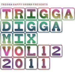 TRIGGA DIGGA MIX VOL. 12