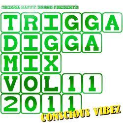 TRIGGA DIGGA MIX VOL. 11 - CONSCIOUS VIBEZ