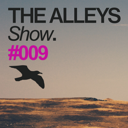THE ALLEYS Show. #009 We Are All Astronauts
