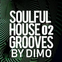 SoulfulHouse Grooves  Vol 2