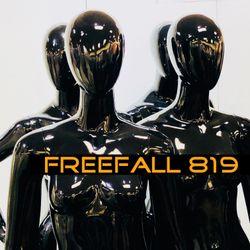 FreeFall 819