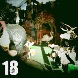 Show #18