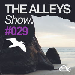 THE ALLEYS Show. #029 We Are All Astronauts