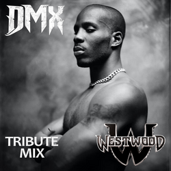 Westwood - DMX tribute mix