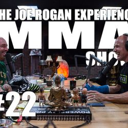 JRE MMA Show #22 with Bas Rutten