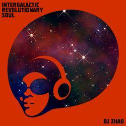 Intergalactic Revolutionary Soul