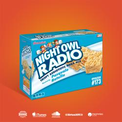 Night Owl Radio 173 ft. Audiotistic SoCal 2018 Mix