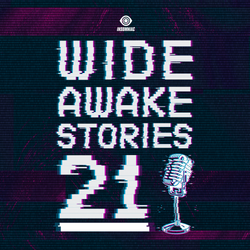 Wide Awake Stories #021 Featuring RÜFÜS DU SOL & Orbital