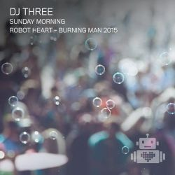 DJ Three - Robot Heart - Burning Man 2015