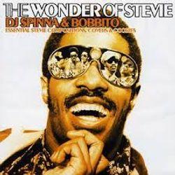Dj Spinna & Bobbito The Wonder of Stevie
