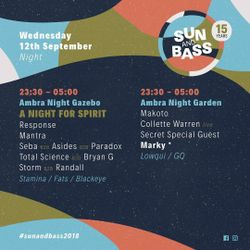 A NIGHT FOR SPIRIT  ...  Feat Bryan Gee B2B Total Science - Stamina Mc  Fats & Blackeye