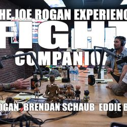 Fight Companion - May 27, 2018
