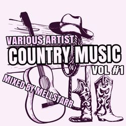 A Taste Of Country Vol #1