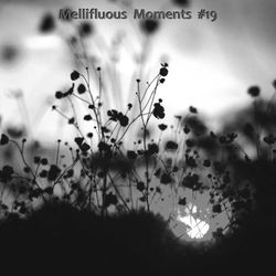 Let Your Guard Down (Mellifluous Moments #19)