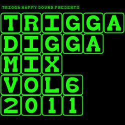 TRIGGA DIGGA MIX VOL. 6