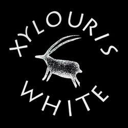 Sept 27 2016 w/ Moles, Chills, Itasca, Nathan Bowles, Xylouris White, Syrinx, Cory Hanson ++