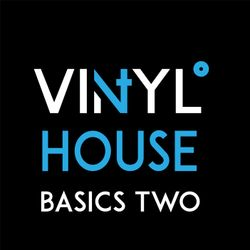 Vi4YL: HOUSE BASICS Vol Two.  Vinyl only mix: Stardust, Armand van Helden, Groove Armada and more!