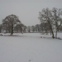 A Winter Folk Show: Ep 16