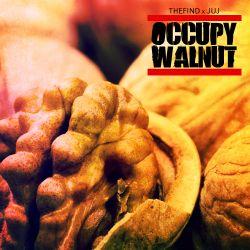 TFM & Juj - Juj's Occupy Walnut Mix