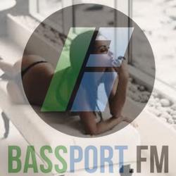 #22 Bassport FM Mon Apr 14th 2014 (Special Guest Mix DJ MishFiya)