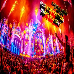 Festival Mix 2019|Best Of EDM Party Dance Mix 2019|Big Room Drops & Epic - Mayoral Music Selection