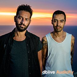 dblive Audiofly