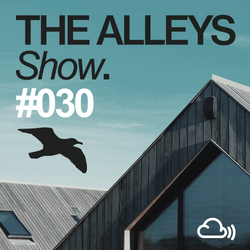 THE ALLEYS Show. #030 The Aurora Principle