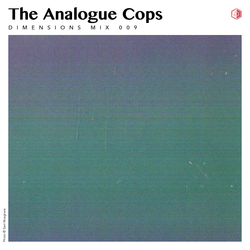 DIM009 - The Analogue Cops