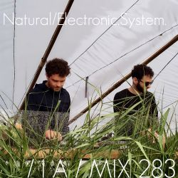 IA MIX 283 Natural Electronic System