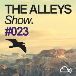 THE ALLEYS Show. #023 We Are All Astronauts