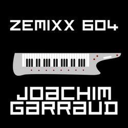ZEMIXX 604, METRONOME FOR PULSARS