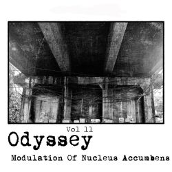Odyssey Vol 11 - Modulation Of Nucleus Accumbens