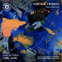 Forts & Friends with Pollination (Oct '21)
