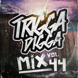 TRIGGA DIGGA MIX VOL. 44